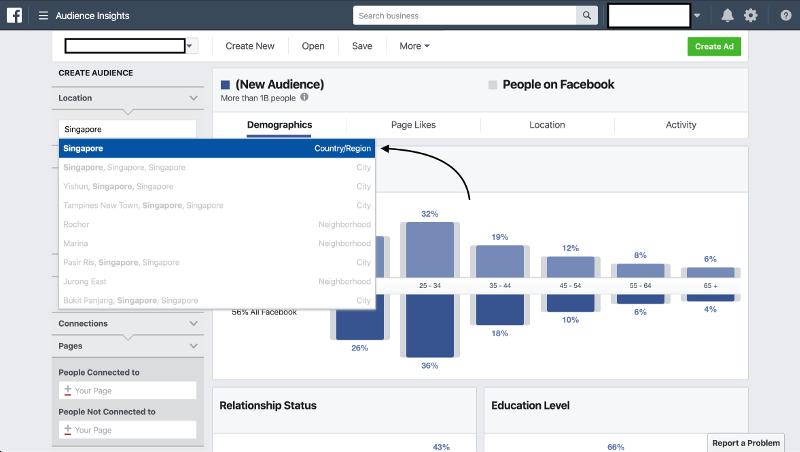Facebook Audience Insights Singapore | Evolve & Adapt