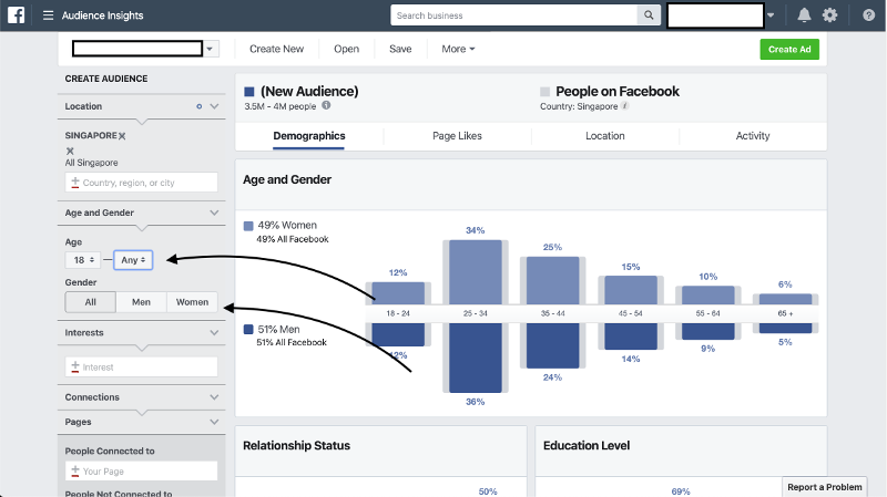 Facebook Audience Insights Age and Gender
