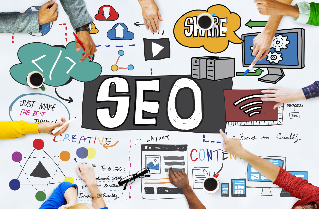 SEO Assessment Singapore | Evolve & Adapt