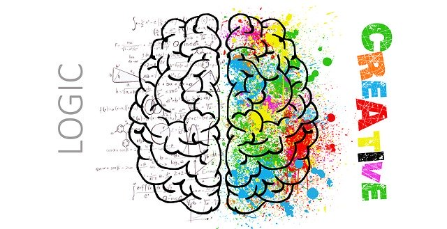 Hybrid Marketing Brain | Evolve & Adapt
