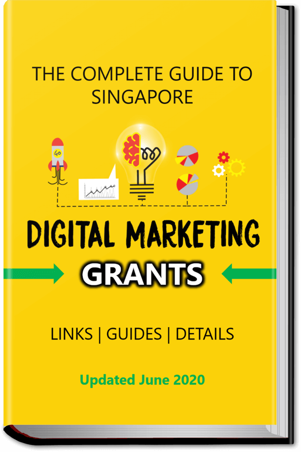 Complete Guide to Singapore Digital Grants | Evolve & Adapt