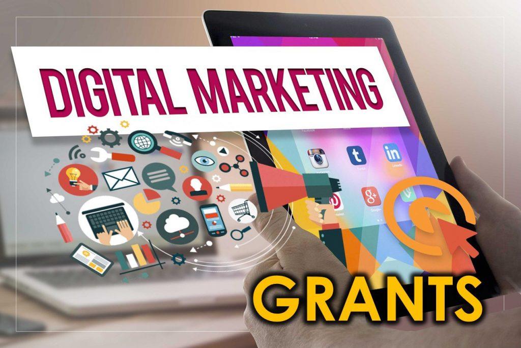 Singapore Digital Marketing Grant | Evolve & Adapt