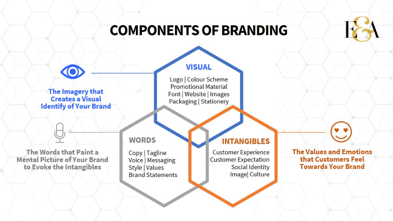 Components of Branding | Evolve & Adapt