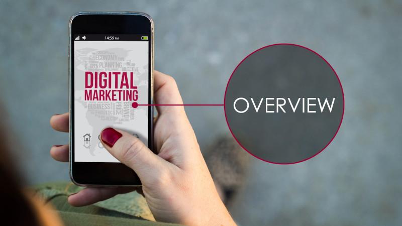 Digital Marketing Overview   Evolve & Adapt