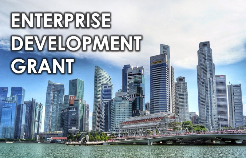 EDG Grant Singapore | Enterprise Singapore