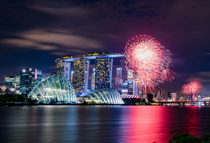 Singapore Strategy Consultant Celebrates 2020