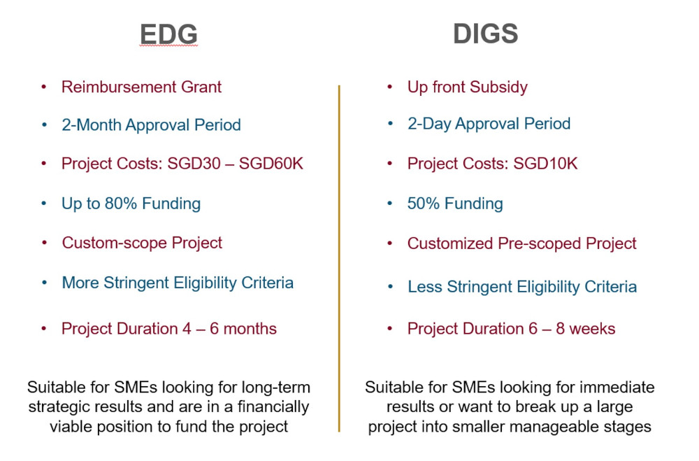 Comparison Between Enterprise Development Grant and Digital Growth Subsidy