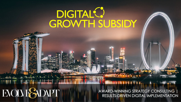 Digital Growth Subsidy Singapore Malaysia | Evolve & Adapt